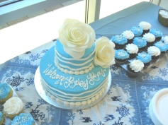 Ashlleys baby shower cake 5-21-16